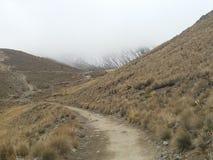 Nevado de托卢卡 免版税库存照片