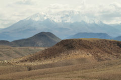 Nevado de Putre peak from Socoroma valley. Chile Royalty Free Stock Images