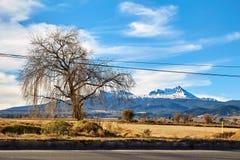 Nevado de Toluca Xinantecatl roadtrip Royalty Free Stock Images