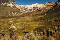 Nevado del Quindio i Los Nevados, Colombia Arkivfoto