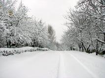 Nevado encima del camino Imagen de archivo libre de regalías