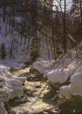 Nevado, escena del invierno de una pequeña corriente cerca de la garganta de Partnachklamm, Alemania Imagenes de archivo