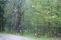 Nevado, lluvia, tiempo, malo, nieve, invierno, tormenta, saludo Imagen de archivo
