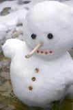 Nevado o boneco de neve 2 Imagens de Stock