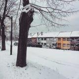 Nevado y colorido Foto de archivo libre de regalías