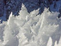 Nevado y maravillas heladas de la naturaleza foto de archivo libre de regalías