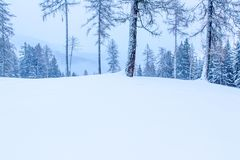 Nevado y paisaje de niebla del invierno de la montaña fotografía de archivo