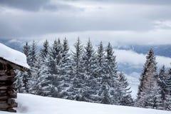 Nevado y paisaje de niebla del invierno de las montañas foto de archivo