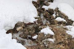 Nevado y piedras Imagenes de archivo