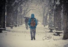 Nevar Fotos de Stock Royalty Free