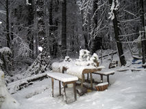 Nevar Fotografia de Stock