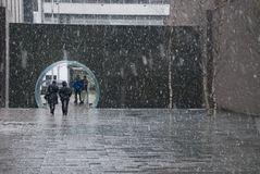 Nevar através do parque fotografia de stock