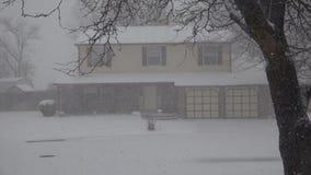 Nevar duramente na casa através das árvores filme