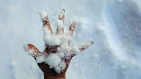 Neve à disposição Imagem de Stock Royalty Free