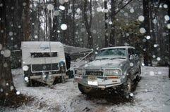 Neve. Foto de Stock Royalty Free