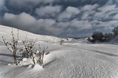 Neve 5. Imagens de Stock