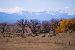Neve adiantada nas montanhas rochosas Fotografia de Stock