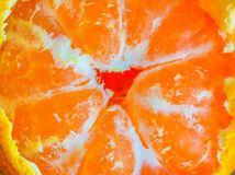 Neve alaranjada brilhante das tangerinas Foto de Stock