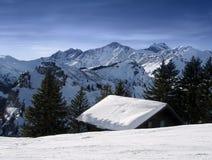 Neve alpina del ander del house-top Fotografia Stock Libera da Diritti
