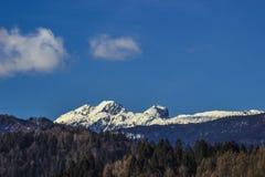 Neve alpina in Slovenia Europa immagini stock libere da diritti