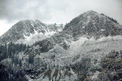 Neve in anticipo Fotografia Stock