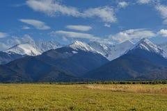 Neve in anticipo di autunno in montagne carpatiche: le scogliere enormi sono coperte di neve, nella priorità alta sono pendii con Immagini Stock Libere da Diritti