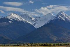 Neve in anticipo di autunno in montagne carpatiche: le scogliere enormi sono coperte di neve, nella priorità alta sono pendii con Fotografie Stock Libere da Diritti