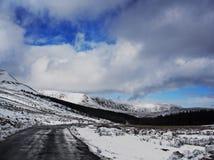 Neve in anticipo di inverno Fotografia Stock