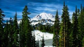 Neve in anticipo sul monte Rainier Fotografia Stock