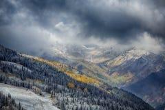 Neve in anticipo sull'autunno Fotografia Stock Libera da Diritti