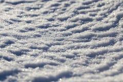 Neve após a queda de neve Fotos de Stock