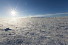 Neve após a queda de neve Fotografia de Stock