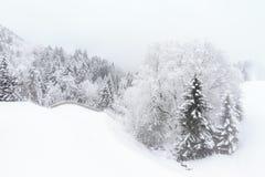 Neve bianca del paesaggio brandnertal immagine stock libera da diritti