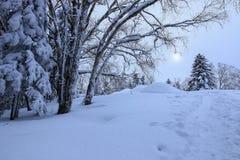 Neve bianca in Xuexiang Fotografia Stock