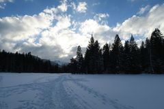A neve branca no prado só Foto de Stock