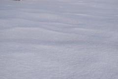 Neve brillante Immagini Stock