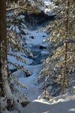 Neve-calçar nas montanhas do inverno Foto de Stock