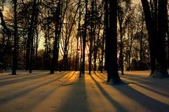 Neve calda Fotografia Stock Libera da Diritti