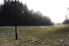 Neve che cade sopra ad un'erba verde con i pali elettrici fotografie stock
