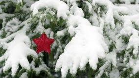 Neve che cade sull'albero di abete con la stella rossa di Natale stock footage