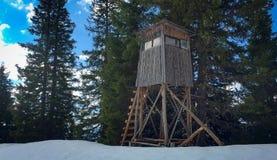 Neve che scompare nelle alpi austriache Immagine Stock Libera da Diritti