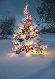A neve cobriu a árvore de Natal Imagem de Stock