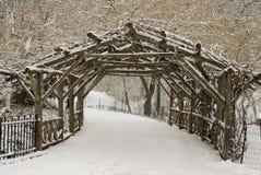 A neve cobriu árvores e gramado em Central Park Fotos de Stock