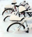 A neve cobriu bicicletas fotografia de stock royalty free