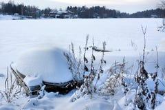 A neve cobriu campos Fotos de Stock