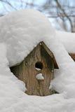 A neve cobriu a casa do pássaro Fotografia de Stock