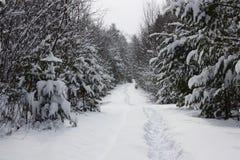A neve cobriu a estrada Fotos de Stock Royalty Free