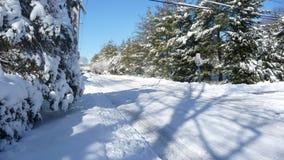 A neve cobriu a estrada no inverno Fotos de Stock Royalty Free