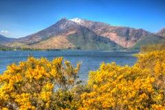 A neve cobriu montanhas escocesas HDR colorido brilhante de Escócia do lago leven Scottish do Loch das montanhas Fotografia de Stock