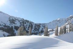 A neve cobriu montes fotografia de stock